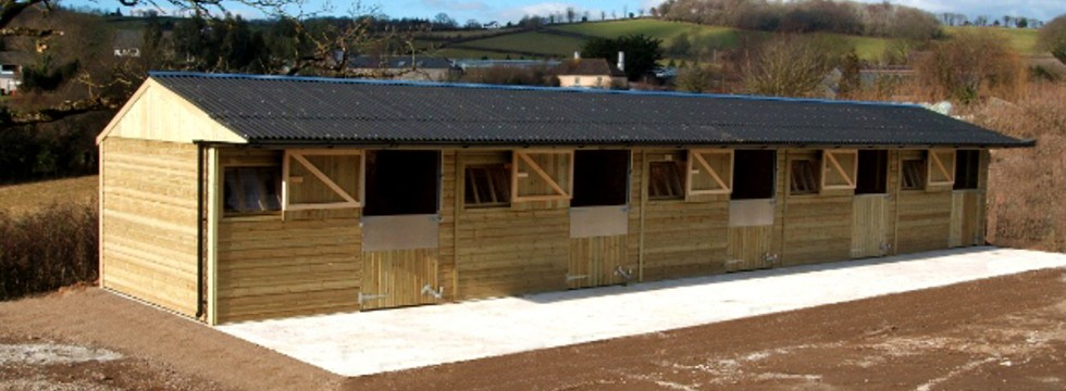 Five horse stables made from timber.