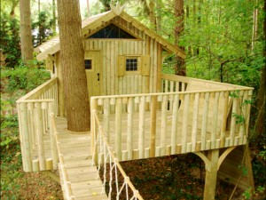 treehouse_